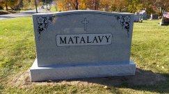 Matalavy